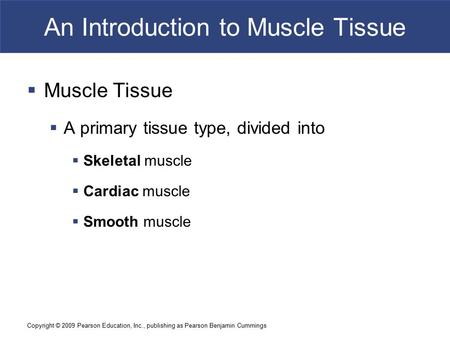 Copyright © 2009 Pearson Education, Inc., publishing as Pearson Benjamin Cummings An Introduction to Muscle Tissue  Muscle Tissue  A primary tissue type,