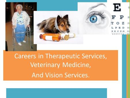Careers in Therapeutic Services, Veterinary Medicine,