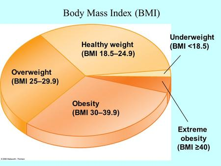 Overweight (BMI 25–29.9) Healthy weight (BMI 18.5–24.9) Underweight (BMI <18.5) Extreme obesity (BMI ≥40) Obesity (BMI 30–39.9) Body Mass Index (BMI)