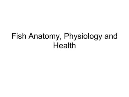 Fish Anatomy, Physiology and Health