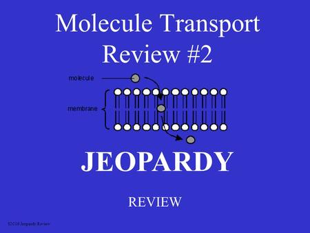 Molecule Transport Review #2 REVIEW JEOPARDY S2C06 Jeopardy Review.