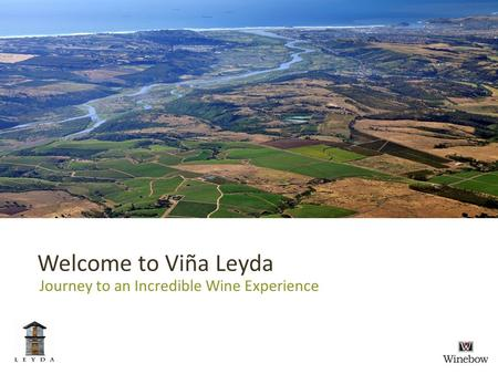 Welcome to Viña Leyda Journey to an Incredible Wine Experience.
