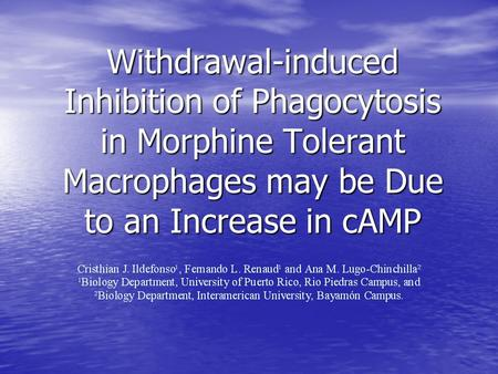 Withdrawal-induced Inhibition of Phagocytosis in Morphine Tolerant Macrophages may be Due to an Increase in cAMP.
