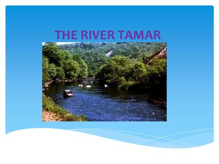 THE RIVER TAMAR. The river Tamar is where Devon ends and Cornwall begins. The 50 mile long waterway provides a natural county boundary. It starts near.