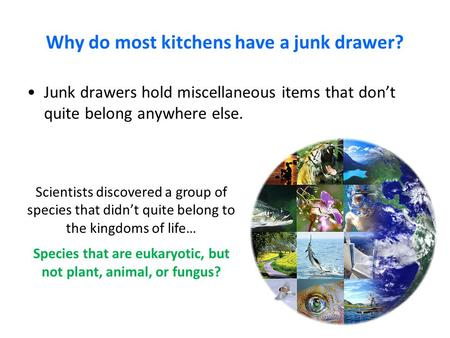 Why do most kitchens have a junk drawer?