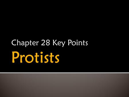 Chapter 28 Key Points.  Simplest Eukaryotes  Most diverse kingdom  Can be unicellular or multicellular  Paraphyletic  Under reorganization.
