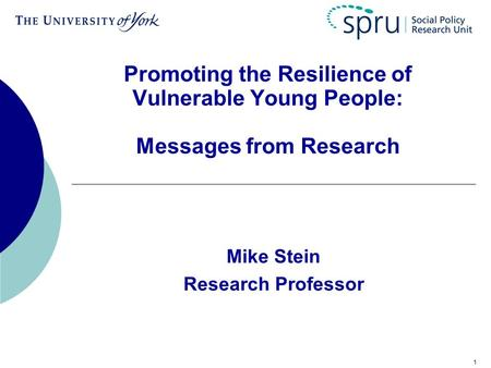 1 Promoting the Resilience of Vulnerable Young People: Messages from Research Mike Stein Research Professor.