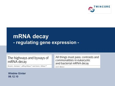 1 mRNA decay - regulating gene expression - Wiebke Ginter 06.12.10.