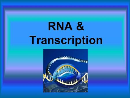 RNA & Transcription. RNA (Ribonucleic Acid) Journal For all your RNA news!