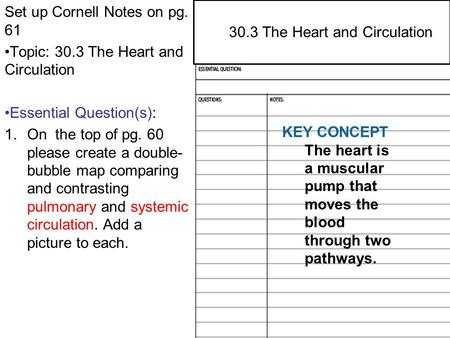 29.4 Central and Peripheral Nervous Systems Set up Cornell Notes on pg. 61 Topic: 30.3 The Heart and Circulation Essential Question(s): 1.On the top of.