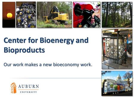 Center for Bioenergy and Bioproducts Our work makes a new bioeconomy work.