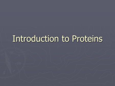 Introduction to Proteins. What do proteins do? 1) Structural proteins  Function: Support  Example:Collagen and elastin provide a fibrous framework in.