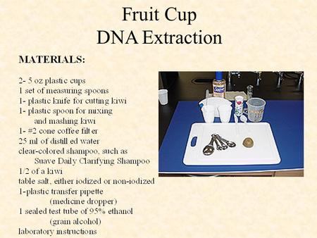 Fruit Cup DNA Extraction. Step 1 Into one of the 5 oz cups add 1 teaspoon of shampoo. Fruit Cup DNA Extraction.