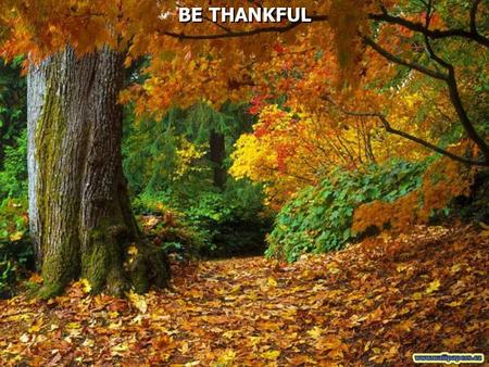 BE THANKFUL. 1 Thessalonians 5:16 Rejoice always, 17 pray without ceasing, 18 in everything give thanks; for this is the will of God in Christ Jesus for.