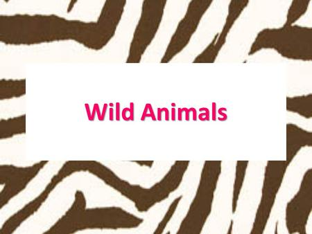 Wild Animals. These animals are not found in Malta.