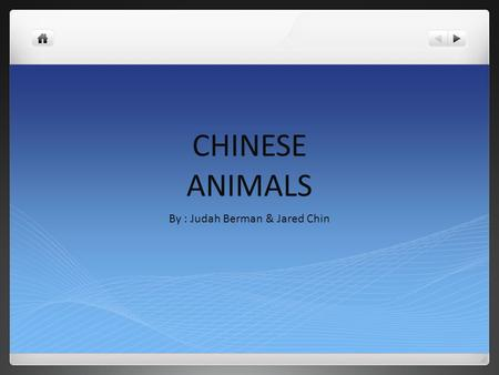 CHINESE ANIMALS By : Judah Berman & Jared Chin. INTRODUCTION Did you ever wonder what animals live in China? There are many different animals in China.