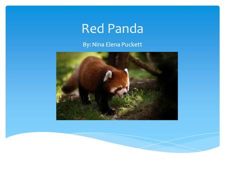 Red Panda By: Nina Elena Puckett.  I will need a backpack that cost $50.14 to carry stuff.  Sleeping bags to sleep in cost $36.99  Rain gear to not.