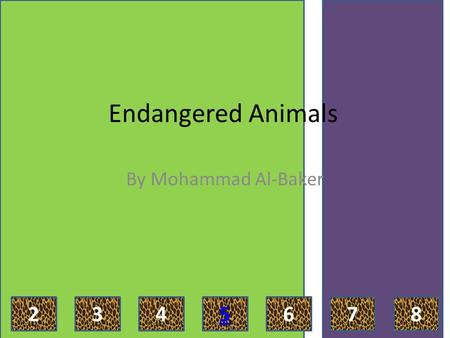 Endangered Animals By Mohammad Al-Baker 2435768 Introduction What is an endangered animal? Endangered animals are animals that are less than 500, 000.