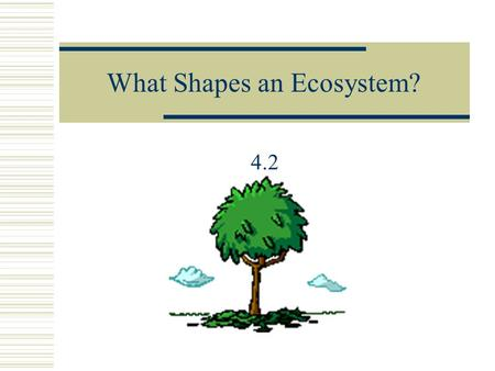 What Shapes an Ecosystem? 4.2 Biotic vs. Abiotic Factors  Biotic Examples  Trees  Grasses  Weeds  Birds  Snakes  Fish  Bacteria  Abiotic Examples.