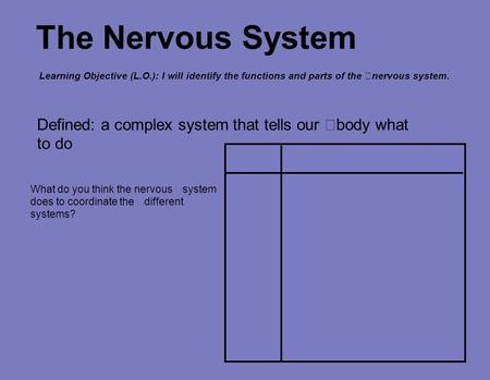 The Nervous System Defined: a complex system that tells our body what to do What do you think the nervous system does to coordinate the different systems?