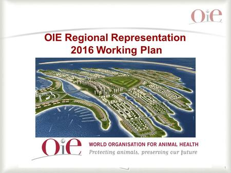 1 OIE Regional Representation 2016 Working Plan. 22 The main objective of the OIE RR ME activities for 2016 is to reinforce Veterinary Services capabilities.