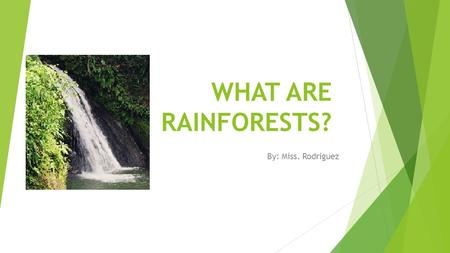 WHAT ARE RAINFORESTS? By: Miss. Rodriguez. Today You will Learn  What is a rainforest?  Where are Tropical Rainforest located?  What makes a Rainforest?