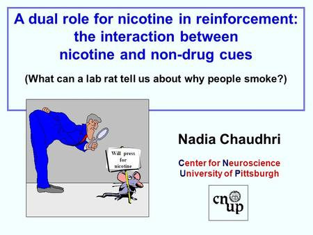 A dual role for nicotine in reinforcement: the interaction between nicotine and non-drug cues (What can a lab rat tell us about why people smoke?) Nadia.