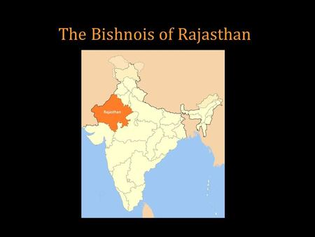 The Bishnois of Rajasthan