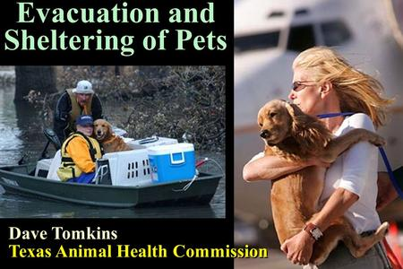 1 Evacuation and Sheltering of Pets Dave Tomkins Texas Animal Health Commission Dave Tomkins Texas Animal Health Commission.