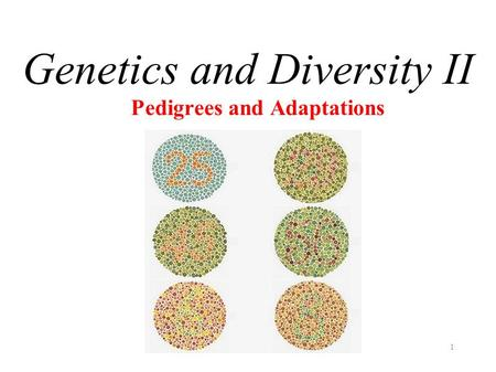 1 Pedigrees and Adaptations Genetics and Diversity II.