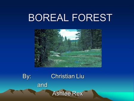 BOREAL FOREST By: Christian Liu and and Ashlee Rex Ashlee Rex.