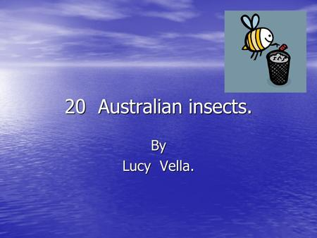 20 Australian insects. By Lucy Vella.. Red back spiders Redback spiders, Latrodectus hasselti, are almost too familiar to need description. Redback spiders,