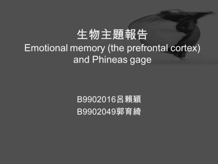 生物主題報告 Emotional memory (the prefrontal cortex) and Phineas gage B9902016 呂賴穎 B9902049 郭育綺.