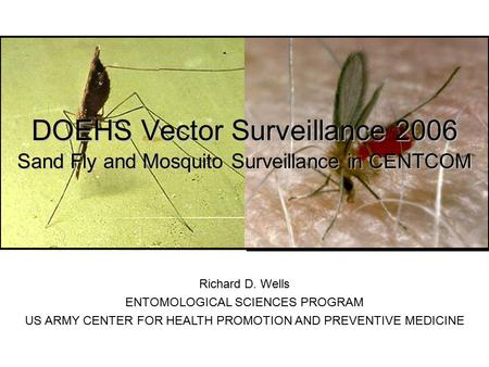 DOEHS Vector Surveillance 2006 Sand Fly and Mosquito Surveillance in CENTCOM Richard D. Wells ENTOMOLOGICAL SCIENCES PROGRAM US ARMY CENTER FOR HEALTH.