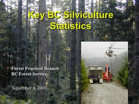 Key BC Silviculture Statistics ä Forest Practices Branch BC Forest Service September 8, 2009.