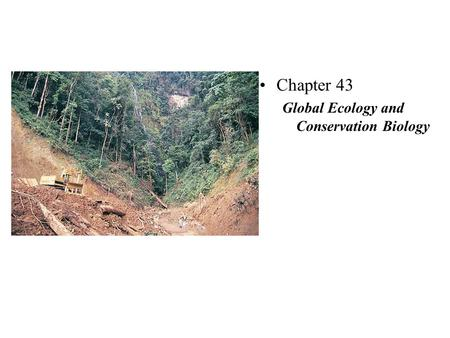 Chapter 43 Global Ecology and Conservation Biology.
