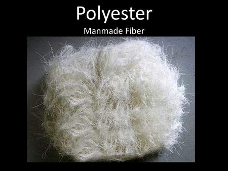 Polyester Manmade Fiber. History… Polyester began as a group of polymers in W.H. Carothers' laboratory Carothers was working for duPont at the time when.