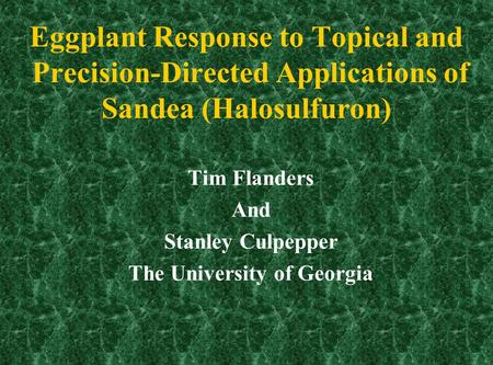 Eggplant Response to Topical and Precision-Directed Applications of Sandea (Halosulfuron) Tim Flanders And Stanley Culpepper The University of Georgia.