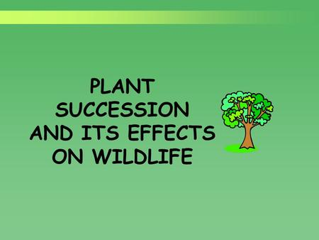 "PLANT SUCCESSION AND ITS EFFECTS ON WILDLIFE. ""Nature doesn't stand still."""