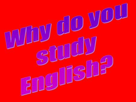 I study English because… I like to study foreign languages.