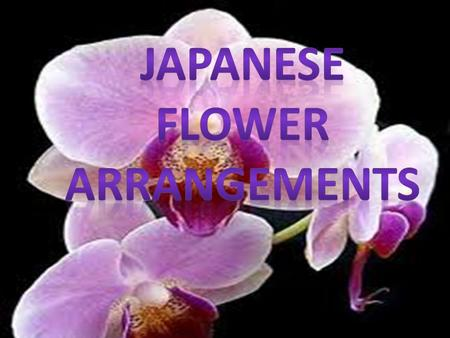Japanese flower arrangements