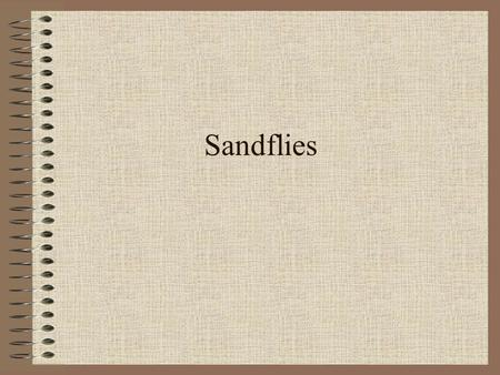 Sandflies. Taxonomic classification Class: Insecta Order: Diptera Phlebotomus spp.in the Old World Lutzomyia spp. (New World )