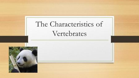 The Characteristics of Vertebrates. Mammals Birds All birds: 1.Are vertebrates (which means they have a backbone or spine) 2.Are endothermic. Also known.