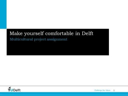 1 Challenge the future Make yourself comfortable in Delft Multicultural project assignment.
