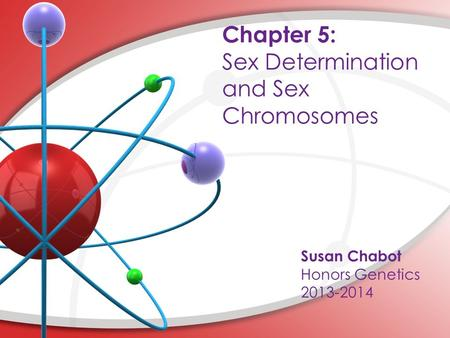 Chapter 5: Sex Determination and Sex Chromosomes Susan Chabot Honors Genetics 2013-2014.