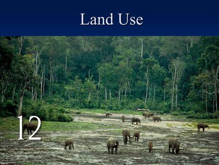 Land Use. 29% of the earth is land –29% forests and woodlands –27% range and pastures –11% cropland –33% tundra, marsh, desert, urban areas, bare rock,