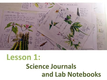 And Lab Notebooks Lesson 1: Science Journals. Science Journal Expectations 1. Journals must be permanently bound. Do not use notebook paper for journal.