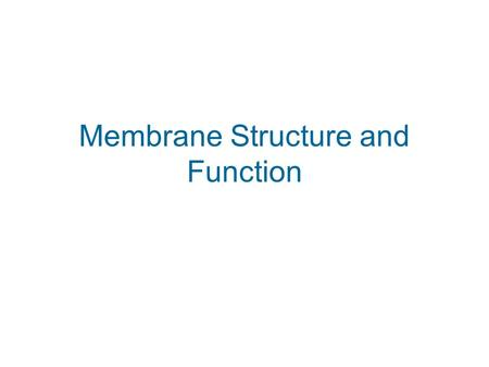 Membrane Structure and Function. What is the Function of The Plasma Membrane? Boundary Must be selectively permeable What, then is the structure that.
