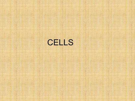 CELLS. Cells – the basic unit of structure and function in all living things (plants and animals)