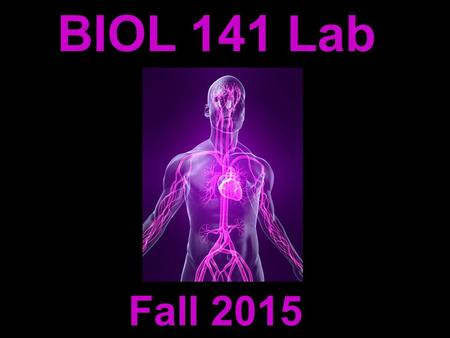 BIOL 141 Lab Fall 2015. Michelle Smith   Instructor: Contact Information: